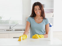 Beautiful woman doing the housework Royalty Free Stock Photography
