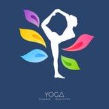 Beautiful woman doing yoga Stock Photos