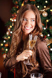 Beautiful Woman Drinking Champagne Stock Images