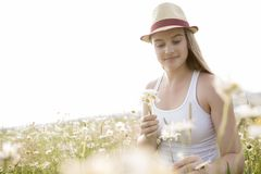 Beautiful woman enjoying daisy in a field Royalty Free Stock Photography