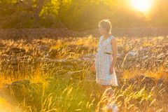 Beautiful woman in evening light royalty free stock photos
