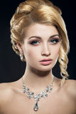 Beautiful woman with evening make-up and hairstyle Stock Photography