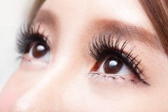 Beautiful woman eye Stock Photography