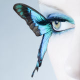 Beautiful woman eye close up with butterfly wings Royalty Free Stock Images