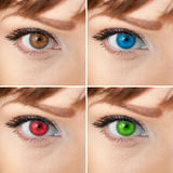 Beautiful woman eye collage Royalty Free Stock Photo