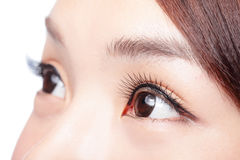 Beautiful woman eye Royalty Free Stock Photo
