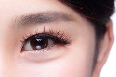 Beautiful woman eye Stock Photography