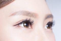 Beautiful woman eye. With long eyelashes. asian model stock photos
