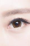 Beautiful woman eye. With long eyelashes. asian model royalty free stock photo