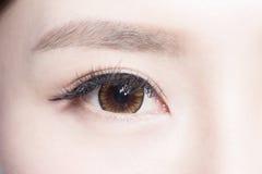 Beautiful woman eye. With long eyelashes. asian model royalty free stock photos