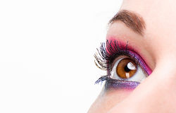 Beautiful woman eye with make-up Stock Image