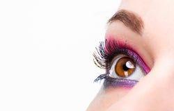 Beautiful woman eye with make-up Stock Image