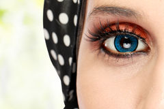 Beautiful woman eye with makeup Stock Photography
