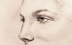 Beautiful woman eye. pencil drawing on old paper. Stock Photos