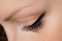 Beautiful Woman Eyelash. Beautiful woman look down with fluffy eyelash Stock Photos
