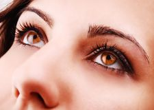 Beautiful woman eyes Stock Photography
