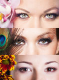 Beautiful woman eyes Stock Images