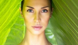 Beautiful Woman face with Natural nude make-up on a tropical lea. F background. Healthy life. Sexy beautiful woman behind the leaves. Pure natural cosmetic and Stock Image