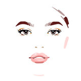 Beautiful woman face. Vector illustration drawing eps 10 Royalty Free Stock Images