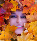 Beautiful woman face in yellow leafs Royalty Free Stock Photo