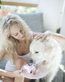Beautiful woman feeding cake to dog in house Royalty Free Stock Images
