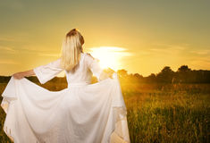 Beautiful woman in the field Royalty Free Stock Photo
