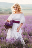 Beautiful woman in a field of blossoming lavender Royalty Free Stock Image
