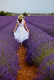 Beautiful woman in field of lavender in Provence, France. Stock Image