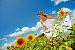 Beautiful woman on field in summer Stock Images