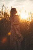 Beautiful woman in field at summer sunset Stock Images