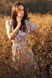 Beautiful Woman on a Field in Summertime Stock Photos