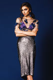 Beautiful woman in floral silver top and long silver skirt Royalty Free Stock Photo