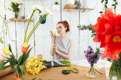 Beautiful woman florist holding flowers for bouquet Stock Photography