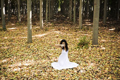 Beautiful woman in forest Royalty Free Stock Images