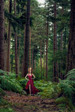 Beautiful woman in forest with deers Stock Photography