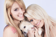 A Beautiful woman friends fashion, holding dog in Stock Images