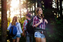 Beautiful woman and friends hiking in forest stock photography