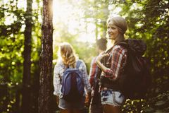 Beautiful woman and friends hiking in forest royalty free stock photos