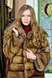 Beautiful woman in fur coat. Stock Image