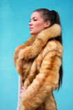Beautiful woman in a fur coat Stock Images