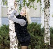 The beautiful woman in a fur coat leaned against a birch, fall Stock Photography