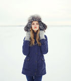 Beautiful woman in a fur hat, winter field Stock Photos