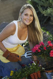 Beautiful Woman Gardening Stock Image