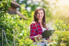 Beautiful woman gardening Royalty Free Stock Photos