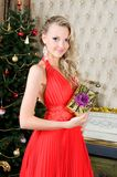 Beautiful woman with gift box. Portrait of the Beautiful woman with gift box at the Christmas tree Stock Photos