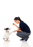 Woman dog food Royalty Free Stock Images