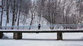 Beautiful woman goes on a snow-covered bridge. Flight over snowstorm in a snowy forest and girl standing along a bridge. Beautiful woman goes on a snow-covered stock video footage