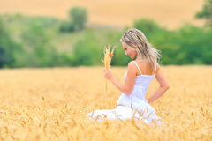 Beautiful woman in golden wheat field Stock Photo