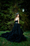 Beautiful woman in gorgeous dress Stock Images