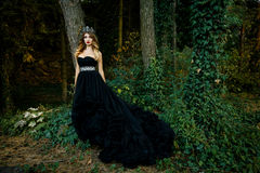 Beautiful woman in gorgeous dress Royalty Free Stock Images